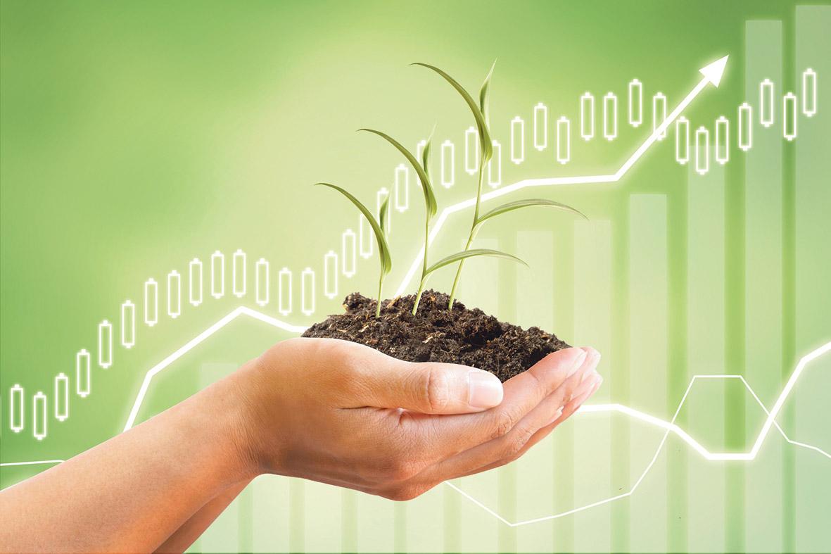 Eine Hand hält einen kleinen Haufen Erde mit einer Pflanze darin, dahinter sind Graphen einer Tabelle zu sehen