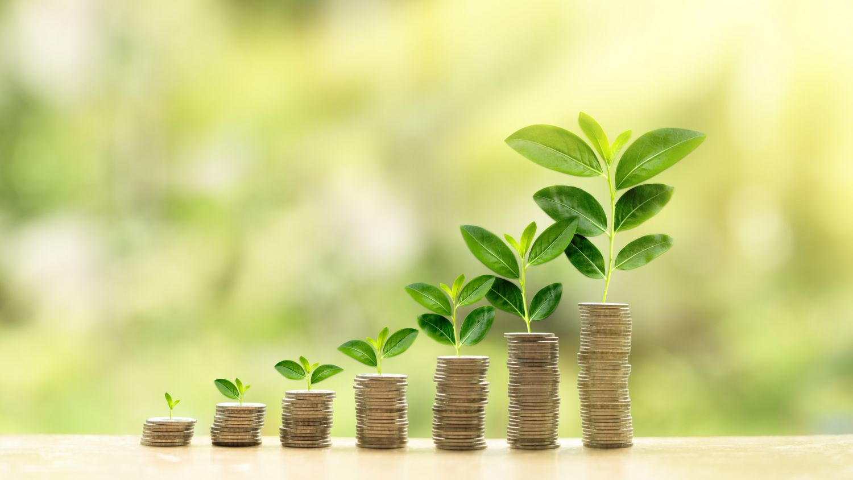 Geldstapel, die höher werden, symbolisiert durch wachsende Pflanzen. Thema: Vermögensaufbau