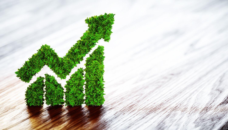 Diagramm aus Pflanzen mit einem nach oben zeigenden Pfeil. Grüne Geldanlagen werden beliebter.