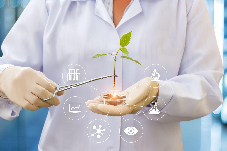 Eine Person im Laborkittel hält eine Pflanze in einem Glasschälchen. Thema: Biotechnologie als Investment